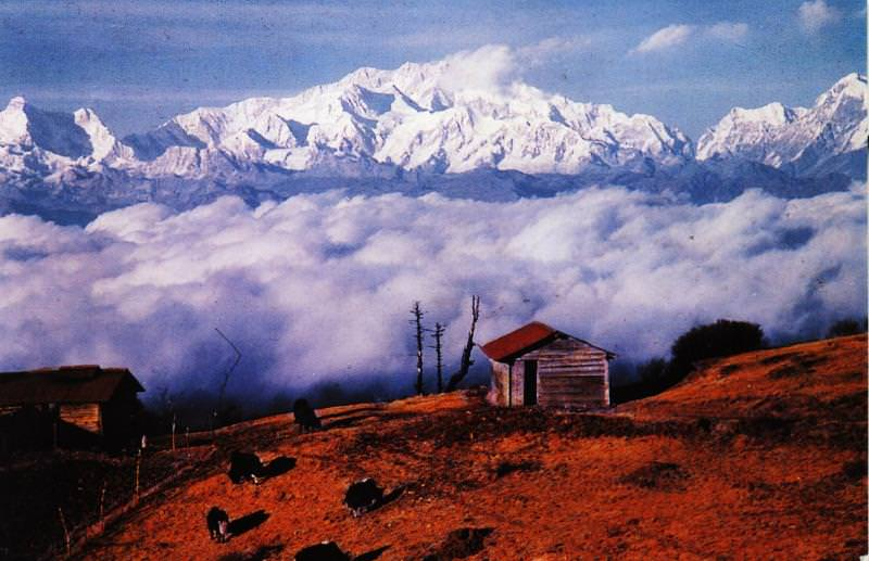 Darjeeling Holidays 5 Days Tour at INR 8,050 By Travel Masti