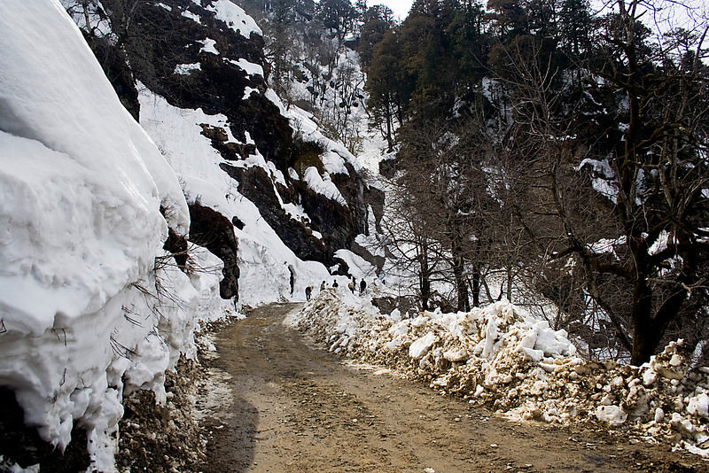 Shimla – Jalori Pass – Manali Trek 10 Days Tour By Dynamic Tours