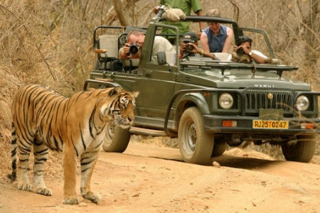 Wild Tiger Tour 16 Days Tour By ERCO Travels Pvt Ltd.