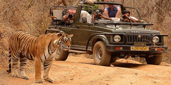 Golden Triangle Tour With Ranthambore 8 Days Package By Indian Holidays