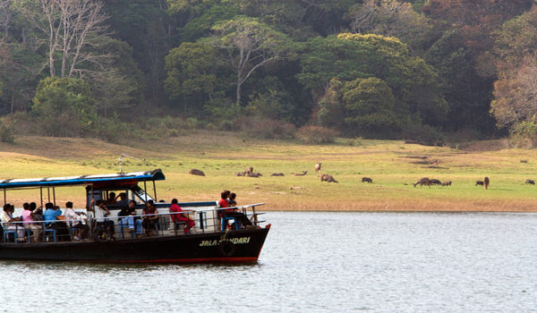 Boat rides at Periyar Sanctuary
